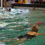 Weldmar's 2017 Swimathon