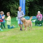 Weldmar Family Dog Show 2017